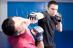martial art training Stock Photography