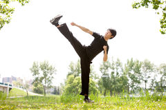 Martial artist with his high kick. Young Martial artist with his high side kick against blur background Stock Image