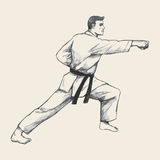 Martial Artist Royalty Free Stock Photography