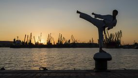 Silhouette of a taekwondo fighter on a sunset over sea. Martial artist training alone on the sea pier, practising his moves on sunset and port cranes background stock photos