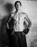 Martial Artist Royalty Free Stock Photos