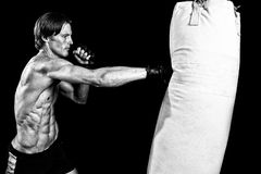 Martial Artist Royalty Free Stock Images