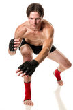 Martial Artist Royalty Free Stock Photo