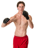 Martial Artist Royalty Free Stock Photos