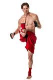 Martial Artist Stock Image