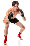 Martial Artist Stock Photography