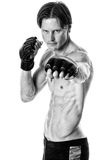 Martial Artist Royalty Free Stock Image