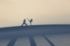 Martial artists silhouettes and shadows Royalty Free Stock Images