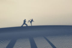 Martial artists silhouettes and shadows Royalty Free Stock Photo