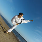 Martial-arts Photographie stock
