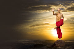 Free Martial Arts Stock Photography - 22277102