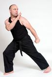 Martial Arts Stock Image