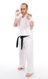 Martial arts. White man doing martial arts on isolated background Stock Image