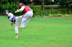 Martial arts in action. Kuala Lumpur, Malaysia – December 29, 2013. Martial arts in action. Two sparing partners in action during taekwondo training. Taekwondo Royalty Free Stock Photography
