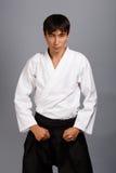 Martial arts Stock Photography
