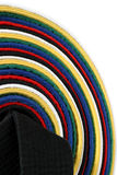 Martial Arts Belts - vertical. From White Belt to Black belt Stock Image