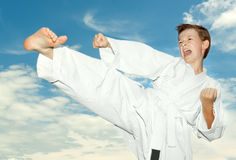 Martial arts boy Royalty Free Stock Images