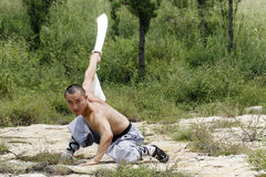 Martial Arts....broadsword. Royalty Free Stock Images