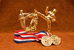 Martial Arts Champion. Martial Arts Trophy Set with Medallions royalty free stock image
