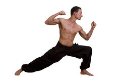 Martial Arts defence pose Royalty Free Stock Photo