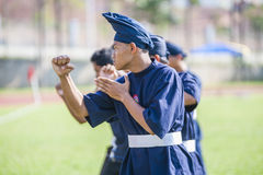 Martial Arts Demonstration Royalty Free Stock Photos