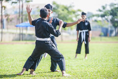 Martial Arts Demonstration Royalty Free Stock Photo
