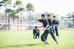Martial Arts Demonstration royalty free stock image