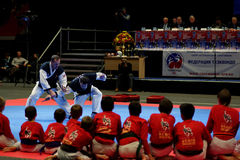 Martial arts festival Baltic Sea Cup in St. Petersburg, Russia. St. Petersburg, Russia - October 17, 2015: Demonstration performance of St. Petersburg Hapkido Royalty Free Stock Images