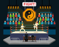 Martial Arts Fight Illustration Stock Images