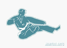 Martial arts fighter. Vector illustration of martial arts fighter Stock Illustration