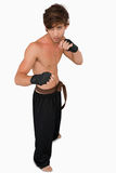 Martial arts fighter in fighting stance royalty free stock photos