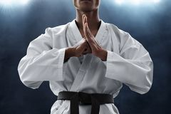 Martial art fighter greeting pose royalty free stock photos
