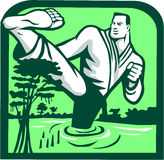 Martial Arts Fighter Kicking Cypress Tree Retro. Illustration of a marital arts fighter kicking cypress tree on swamp or bayou set inside shield shape done in Royalty Free Stock Image