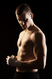 Martial Arts Fighter Stock Photography