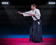 Martial arts fighter with sword Royalty Free Stock Images