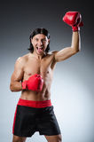 Martial arts fighter Royalty Free Stock Images