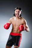 Martial arts fighter Stock Images