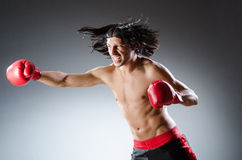 Martial arts fighter Royalty Free Stock Image