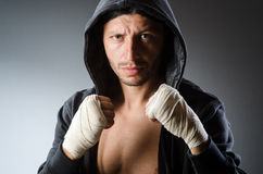 Martial arts fighter Royalty Free Stock Photo