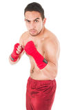 Martial arts fighter wearing red shorts and Stock Image