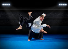 Martial arts fighters. In sports hall Royalty Free Stock Photos