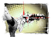 Martial arts frame 2. Illustration of the fighter in the grungy background Royalty Free Stock Images