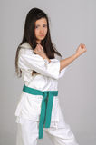 Martial arts girl Stock Image