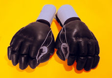 Martial Arts Gloves Royalty Free Stock Images