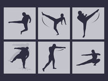 Martial arts icons Royalty Free Stock Photo
