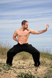 Martial arts instructor Royalty Free Stock Images