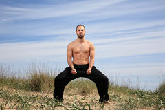 Martial arts instructor Stock Photos