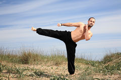 Martial arts instructor Royalty Free Stock Image