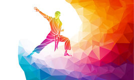 Martial arts jump kick color rainbow silhouette. Karate fighter Stock Images