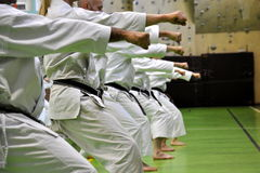 Martial arts karate royalty free stock photo